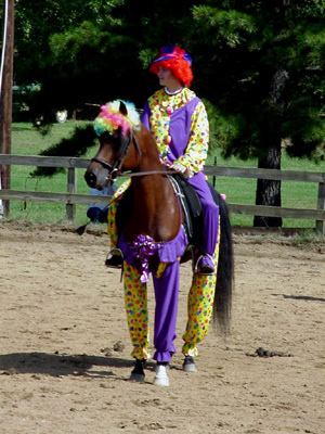 Equine halloween costumes are they wrong horse and man