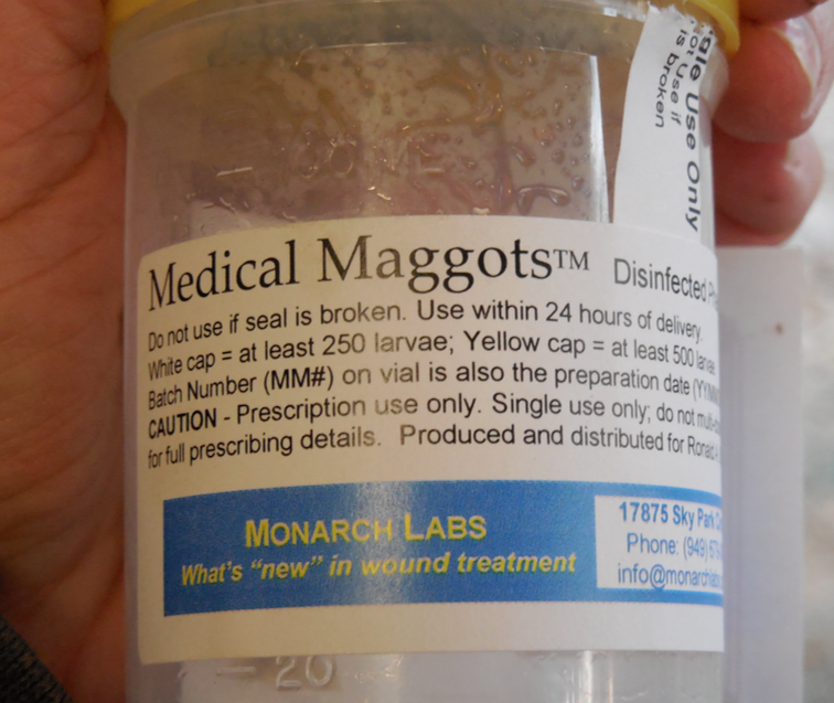 the number of maggots in the Maggot respirometers for example, whilst the number of maggots was the same some of them were dead and hence did not practice respiration.