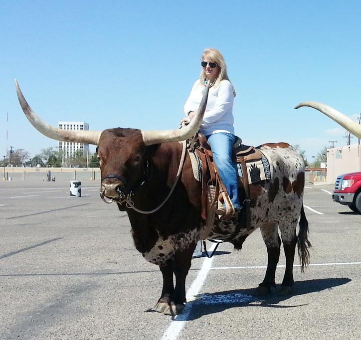 Have you ever ridden a longhorn horse and man for Places to go horseback riding near me
