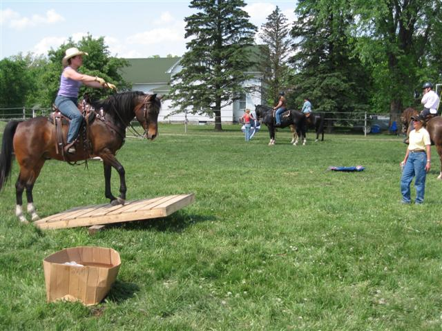 Obstacle Courses Great Ride Idea And You Can Make Your