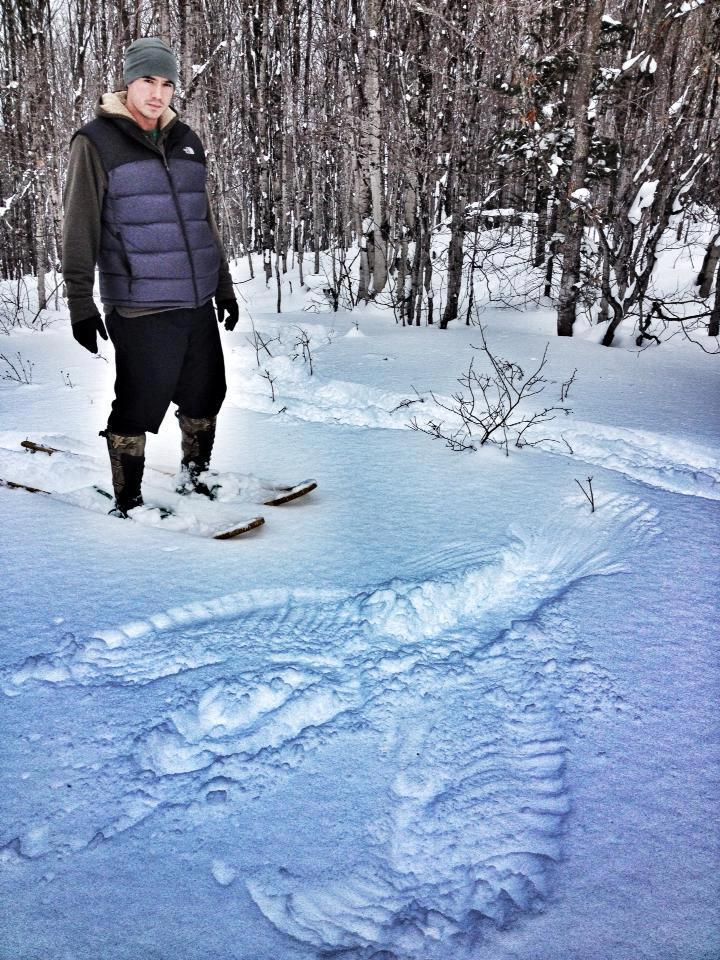 While-snowshoeing-today-an-eagle-trying-to-fly-away-got-into-thick-woods-at-the-edge-of-a-field-and-had-to-fold-wings-and-land.-It-flew-off-immediately-after-landing.-Left-an-awesome-impression..-—-with-Thomas-J.-