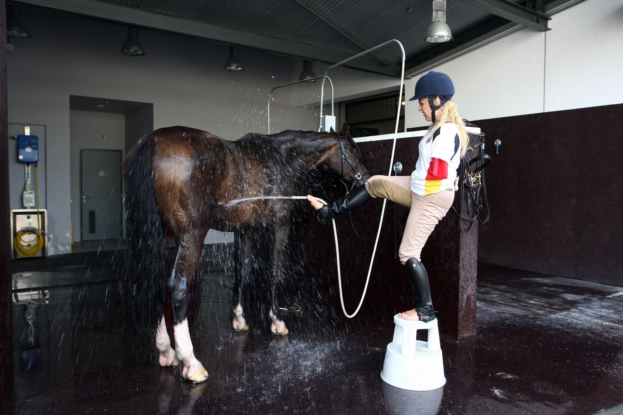 http://horseandman.com/wp-content/uploads/hosing.jpg