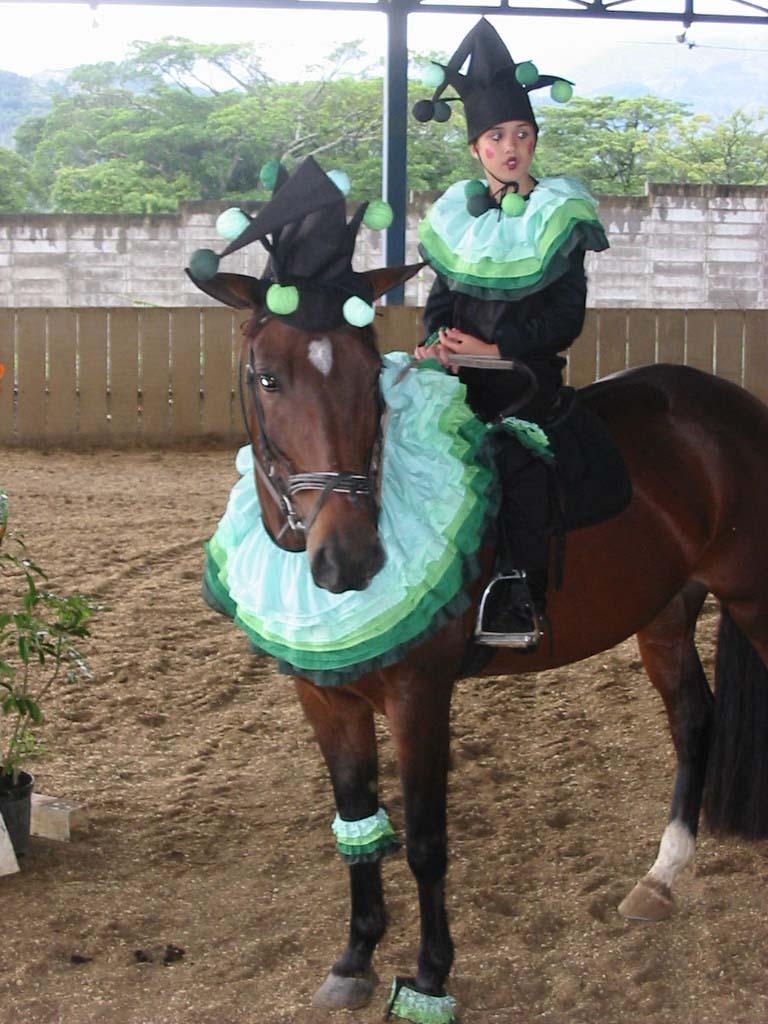 forums  un deguisement d halloween pour mon cheval
