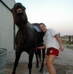 sucks horse cock